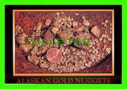 GIRDWOOD, ALASKA  - ALASKA GOLD NUGGETS - ARTIC CIRCLE ENTREPRISES - PHOTO BY KEN GRAHAM - - United States