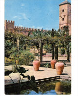 RABAT. Jardins Des Oudaïas. Flamme. Ecrire Le Nom De Famille, Le Pays... - Rabat