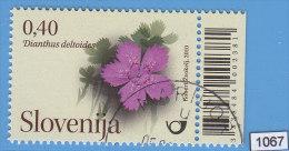 SLOVENIA 2010; Mi: 844; USED CTO; Flowers, Carnation, Dianthus Deltoides - Flora