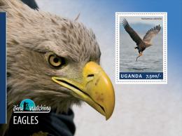 ugn14309b Uganda 2014 Bird Watching s/s Eagle Fish