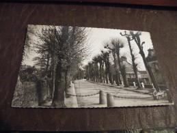 A183..CPA..76..GOURNAY-EN-BRAY..Boulevard Des Planquettes.....rare Beau Plan..ecrite & Voyagée 1957 - Gournay-en-Bray