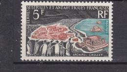TAAF                N° 20....... COTE     92 Euros - Unused Stamps