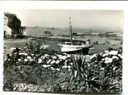 CP - LOguivy De La Mer (22) Le Port - Francia