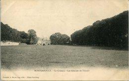CPA - MONTGEROULT - LE CHATEAU - LES AVENUES DE TILLEULS - France