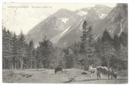 Weinasch, Karawanken (Feistritz Im Rosental, Wainasch) - 1905 - Ohne Zuordnung