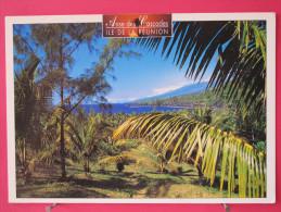 Ile De La Réunion - Anse Des Cascades - Bon état - Recto-verso - Sin Clasificación