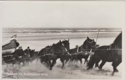 Ameland     De Reddingsboot Terug   Koets Paarden Strand            Scan 8382 - Ameland