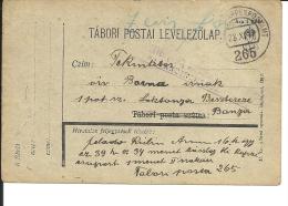 Carte Lettre Militaire , Feldpost,  Royaume De Hongrie  1918(736) - 1850-1918 Imperium