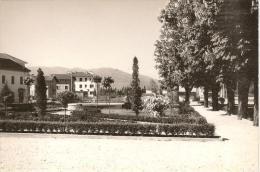 VENETO -SEDICO (Belluno) - Panorama Con Giardini Pubblici - Belluno