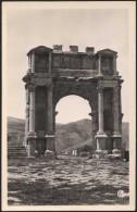 Algérie, Djemila, Vers 1955. Arc De Caracalla - Sétif