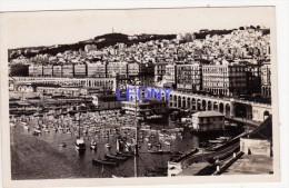CPSM 9X14 D´ ALGERIE -  ALGER - Vue Générale Le SPORT NAUTIQUE - Algiers