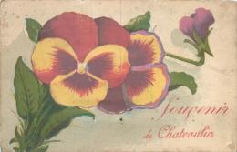 CHATEAULIN  CARTE A SYSTME SOUVENIR DE CHATEAULIN - Châteaulin