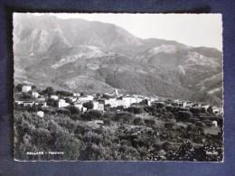 CAMPANIA -SALERNO -PELLARE -F.G. LOTTO N°396 - Salerno