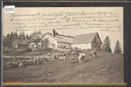 SUR SOMMARTEL - VACHES - TB - NE Neuchâtel