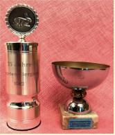 2 X Pokal Kaninchen-Zucht-Verein  -  Ca. 12 Cm Und 15 Cm Länge  -  Von 1979 / 1982 - Vereinswesen