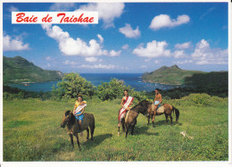 CPM CHEVAL CHEVAUX BAIE DE TAIOHAE NUKU HIVA ILES MARQUISE PROMENADE EQUESTRE - Pferde