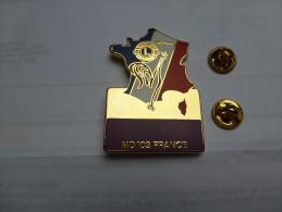 Superbe big pin's enn zamac , Lions International , carte de France , coq