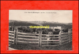 Sur La Montagne Au Parc La Traite Des Vaches - Farmers