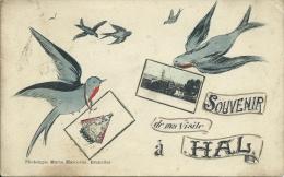 Hal / Halle - Souvenir De ... - 2 Fotos - Zwaluw - 1911 ( Verso Zien ) - Halle