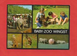 Cuxhaven / Wingst  (A38) , Baby-Zoo Wingst - Neu - - Cuxhaven