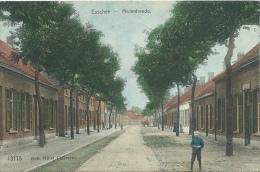 Essen / Esschen - Molenheede  - 1911 ( Verso Zien) - Essen