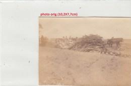 Orig.Photo Allemande-Soldats Allemand Cheveaux Tas De Bois Ou???? (FRONT DE L´EST Guerre14-18) - War 1914-18