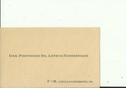 DEUTSCHLAND, FRANKFURT  --  VISITING CARD  --   GRR. PROFESSOR Dr. ARTHUR SCHOENFLIES - Visitenkarten