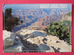 Etats Unis - Arizona - View Of The Canyon On The North At Bright Angel Point  - Très Bon état - Scans Recto-verso - Grand Canyon
