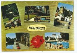 CPSM MULTIVUES MONTARGIS, LOIRET 45 - Montargis