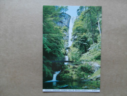 38105 PC: WALES: MONTGOMERYSHIRE: Pistyll Rhaeadr, Highest Fall In Wales.  (240ft.) - Montgomeryshire