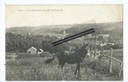 CPA -Vue Générale De Wimille - France