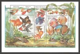 Czech Republic - Animal Breeding: Aquarium Fish, Souvenir Sheet, MINT, 2003 - Blocks & Sheetlets