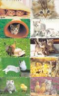 Lot 10 Telecartes Japon Chat - Cat - Kat - Phonecards (chat 1) (au Plus Rapide) - Chats