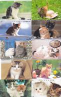 Lot 10 Telecartes Japon Chat - Cat - Kat - Phonecards (chat 2) (au Plus Rapide) - Cats
