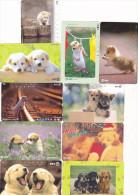 Lot 10 Telecartes Japon Chien - Dog - Hond - Phonecards (chien 2) (au Plus Rapide) - Cats