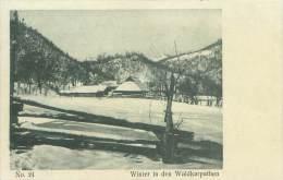 Winter In Den WALDKARPATHEN - Roumanie