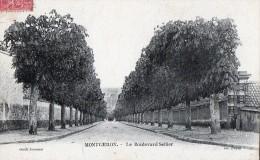 [91] Essonne> Montgeron Boulevard Sellier - Montgeron