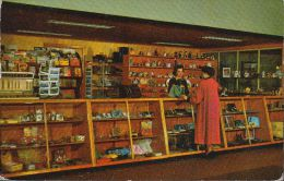 Canada - Neufundland - Magazine And Novelty Booth - Newfoundland And Labrador