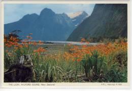 NEW ZEALAND THE LION MILFORD SOUND  Panorama - Nouvelle-Zélande
