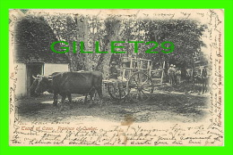 QUÉBEC - TEAM OF OXEN  - IMPERIAL SERIES No 324 - PICTURE POST CARD CO - TRAVEL IN 1906 - UNDIVIDED BACK - - Autres