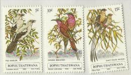 South Africa Bophuthatswana  1980 Birds Set MNH - South Africa (1961-...)