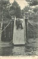 Eléphants De L'Inde - Exposition Coloniale - ** Sur Le Tobogan Piscine ** - Cpa - Ethnique En Bon état. - Géorgie