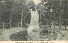 Eléphants De L´Inde - Exposition Coloniale - ** Sur Le Tobogan Piscine ** - Cpa - Ethnique En Bon état. - Géorgie