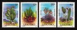LESOTHO , 1986, Mint Never Hinged Stamp(s)  , Cactusses   MI 560-563, #2688 - Lesotho (1966-...)