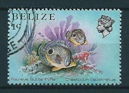 Belize 1984  Meeresfauna  1 C  Michel 729  Gestempelt / Used - Belize (1973-...)
