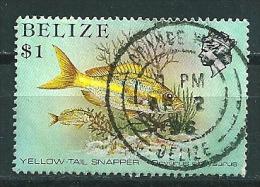Belize 1984  Meeresfauna  1 $  Michel 741  Gestempelt / Used - Belize (1973-...)
