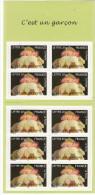 2005-Y T -B C 55-carnet 10 Timbres:Naissances:c´est Un Garçon - Sellos Autoadhesivos