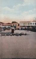 ALEXANDRETTE La Vieille Et Ses Canards - Turquie