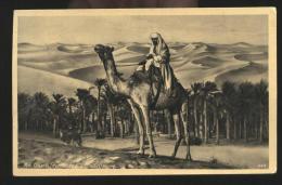 EGITTO - LIBIA - 1936 - OASI NEL DESERTO LIBICO. SPEDITA DALL'EGITTO - Libia
