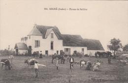 36 - MIGNE / FERME DE SAFRERE - France